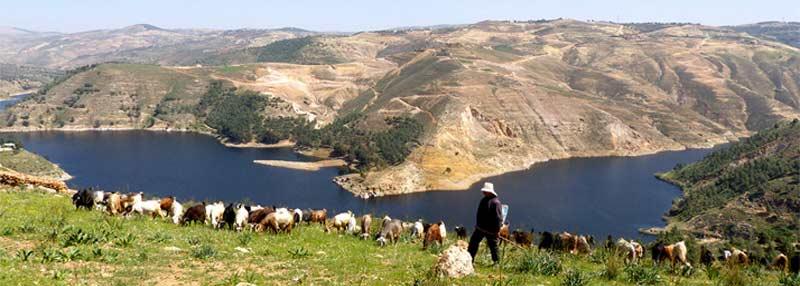King-Talal-Dam