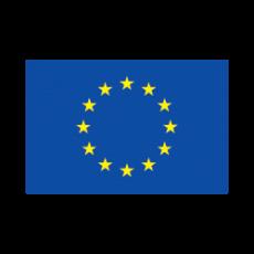 EU Logo 250X250